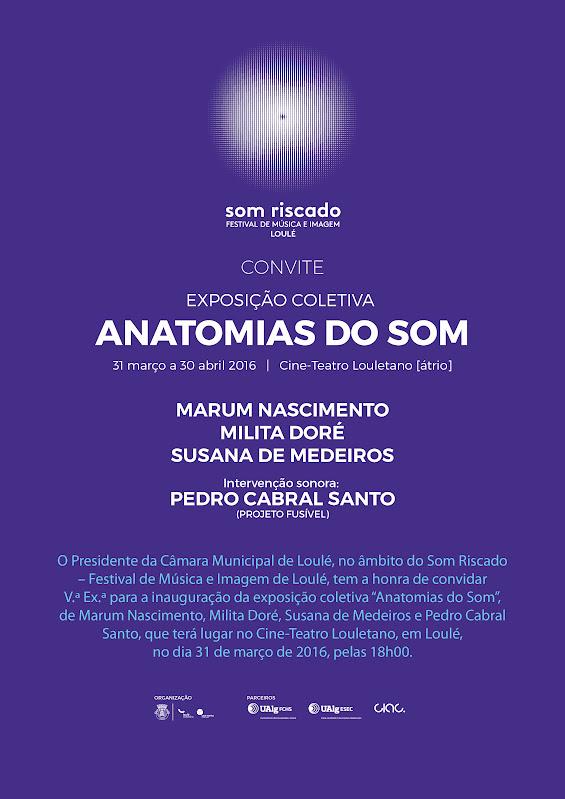 anatomis_do_som