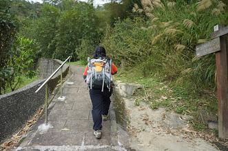 Photo: 開始進入山林