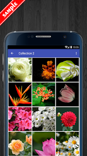 Flower Wallpapers HD Pack - náhled