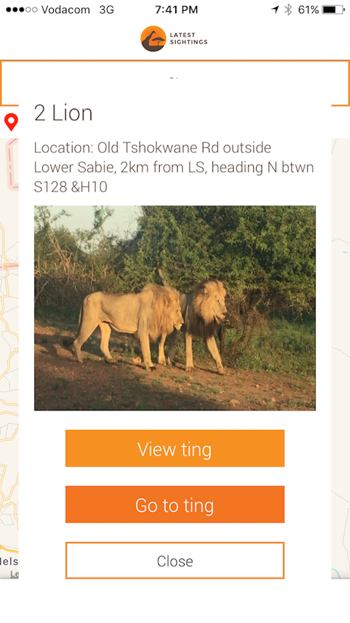 Latest Kruger Sightings- screenshot