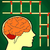 Brain Games Puzzle Matches