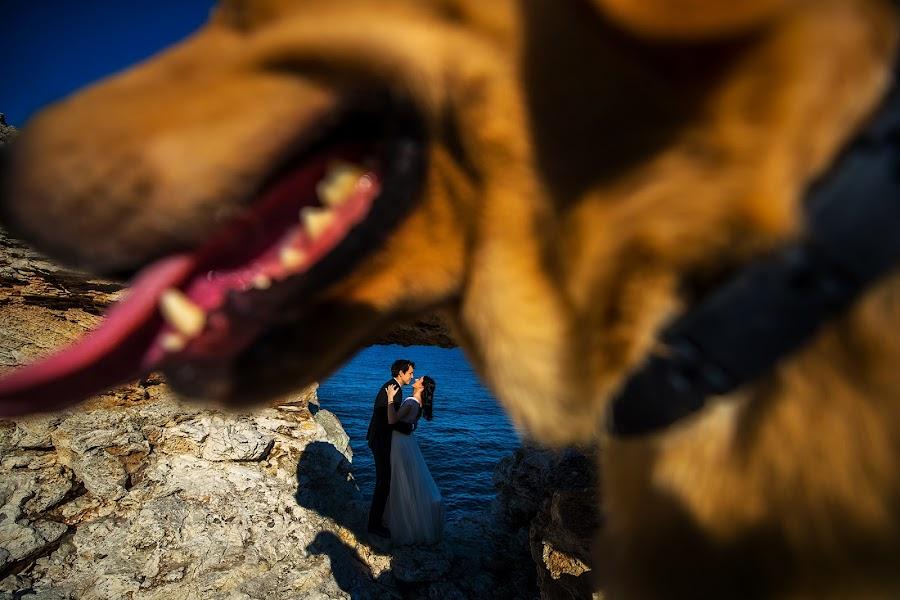 Wedding photographer Daniel Dumbrava (dumbrava). Photo of 06.03.2019