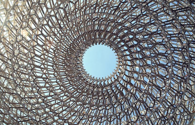 Spirale d'acciaio  di viola94