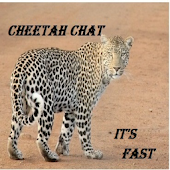 Cheetah Chat