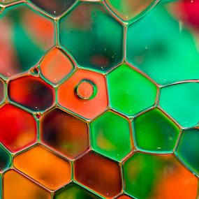 Light & Water by Nigel Bishton - Abstract Macro ( colour, water, macro, light, oil )