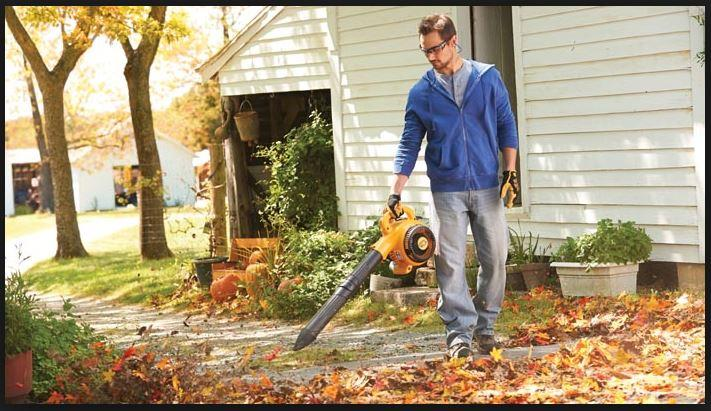 Why Do You Really Need a Leaf Blower Vacuum for your Home.JPG