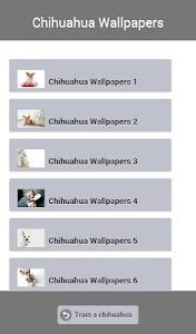 Train a Chihuahua screenshot 4