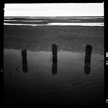 Photo: Tres South Bend, WA with iPhone 5  #blackandwhite#landscape #seascape #hipstamatic