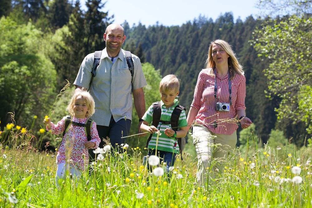 Eine Familie wandert im Sonnenschein über eine Wiese