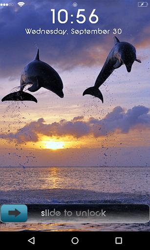 Jumping Dolphin locker theme