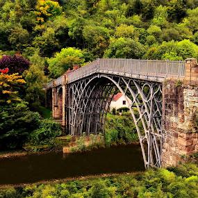 Ironbridge in Autumn by Simon Alun Hark - Buildings & Architecture Bridges & Suspended Structures ( severn, ironbridge, shropshire, telford, river )