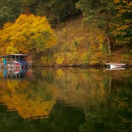 Fall in Bella Vista by Jennifer  Loper  - Landscapes Waterscapes ( lake ann, fall leaves, autumn, bella vista, arkansas )