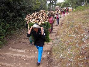 Photo: Naised tööhoos