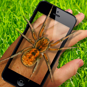 Spider On Hand. Scare Prank for PC and MAC
