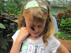 Photo: Genevieve wanted a butterfly to land on her...