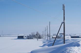 Photo: 北竜町の彩どり・12月の3