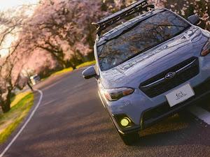 XV GT7のカスタム事例画像 fcl. (エフシーエル)HID・LEDの専門店さんの2020年04月02日19:32の投稿