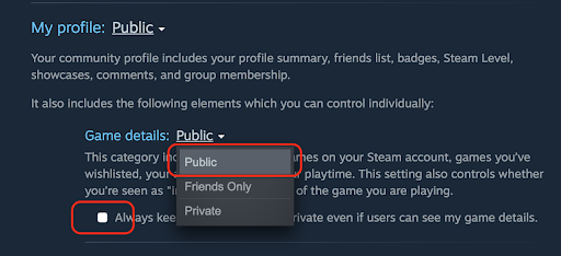 Steam Privacy Settings