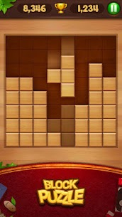 Wood Block Puzzle 35.0 Mod + Data for Android 2