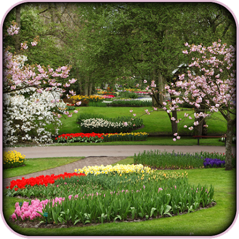 All about 3d garden photo frames for android videos for My garden 3d