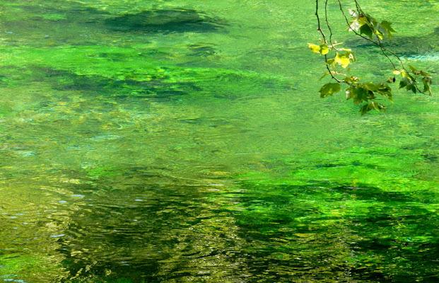 chiare fresche dolci acque .... di provenza
