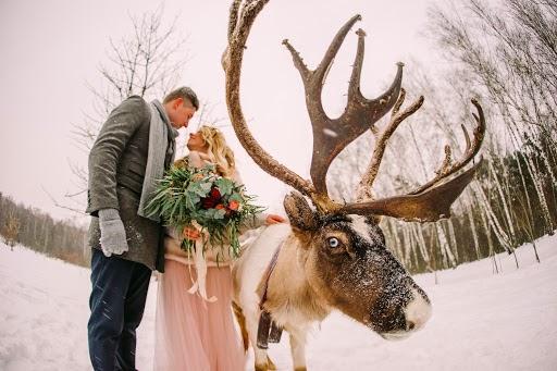 Wedding photographer Alena Gorbacheva (LaDyBiRd). Photo of 22.01.2017