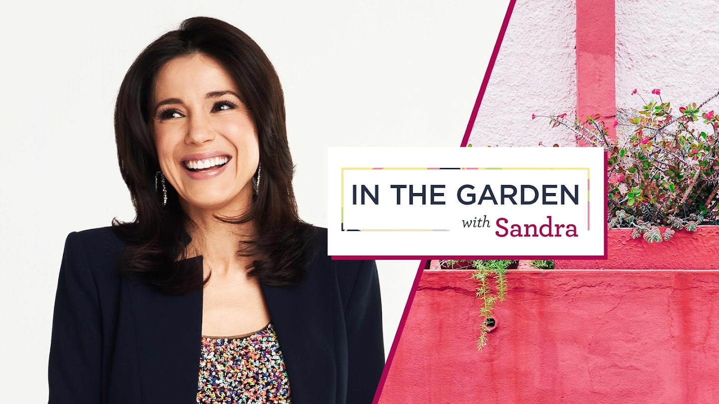 Watch In the Garden With Sandra live