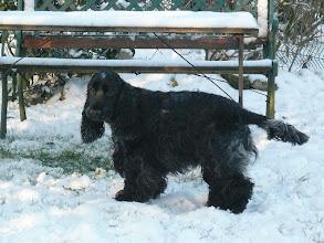 Photo: Carefiel découvre les joies de la neige.