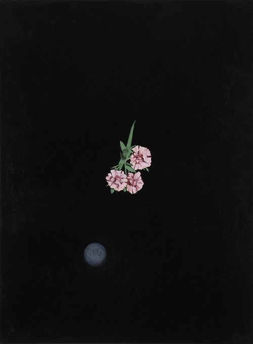 Flowers in the sky (12th attempt), 2007