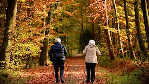 Uno de los factores que aumentan el riesgo de padecer artrosis es la práctica excesiva de ejercicio físico.