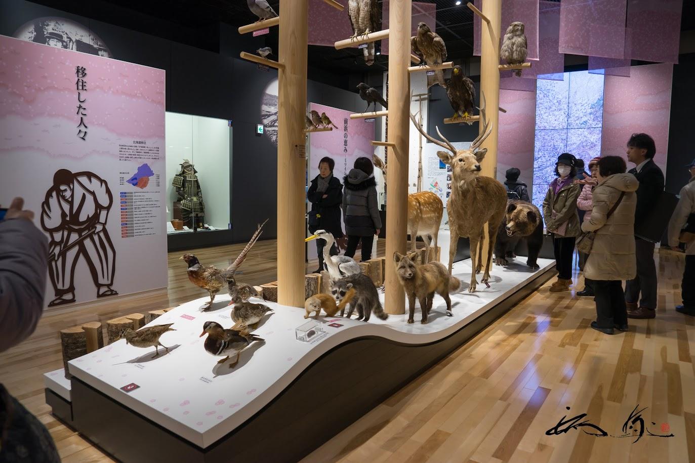 新ひだか町博物館