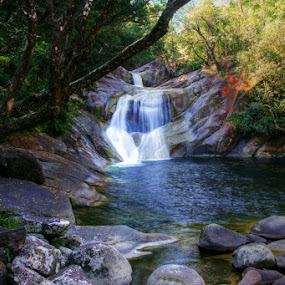 Josephine Falls by Tanya Rossi - Landscapes Waterscapes ( water, falls, waterfall, creek, josephine, river )