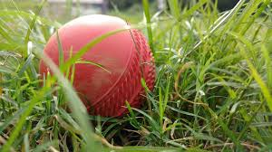 Cricket ball. File picture