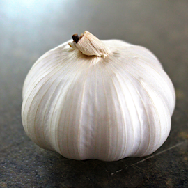 Garlic by Tony Huffaker - Food & Drink Fruits & Vegetables ( garlic, spice, cutting, kitchen, board )