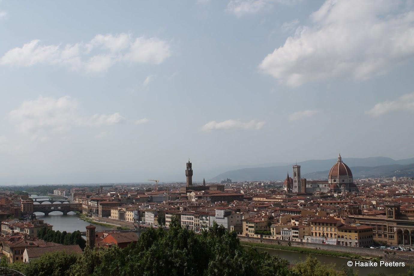 Firenze (Le petit requin)