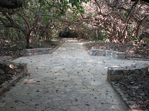 Photo: The site is accessed via these wide well maintained paths.