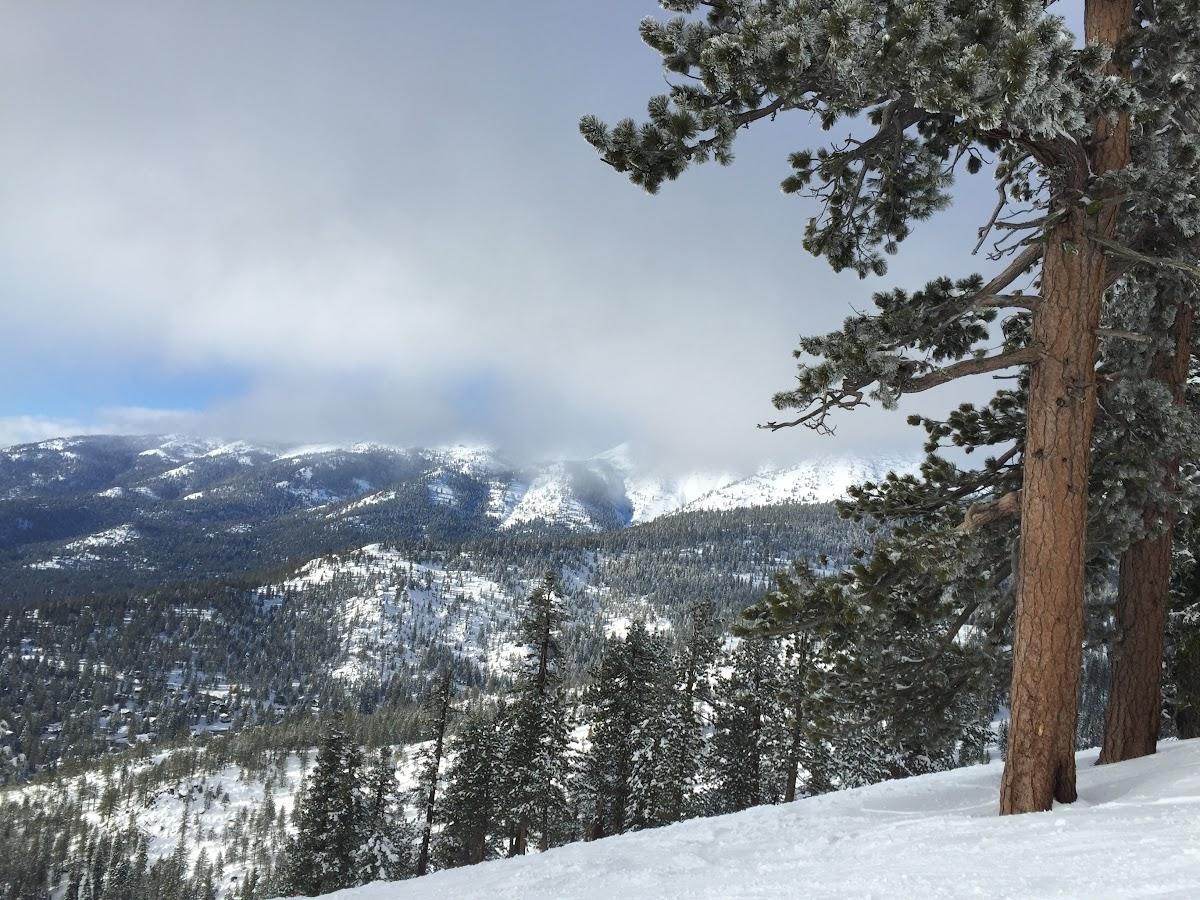 Sierra Nevada mountains from Diamond Peak