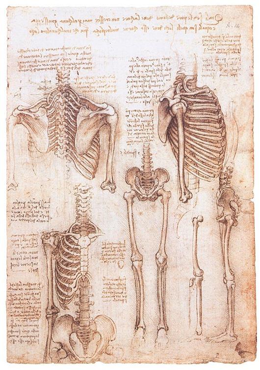 Ingenious inventions Leonardo Da Vinci 10
