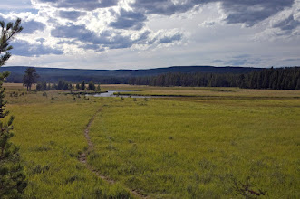Photo: The Gibbon River in Yellowstone- Mad River Outfitters Montana Trip