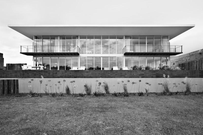 Flora de la laguna - Evelyn Herrera