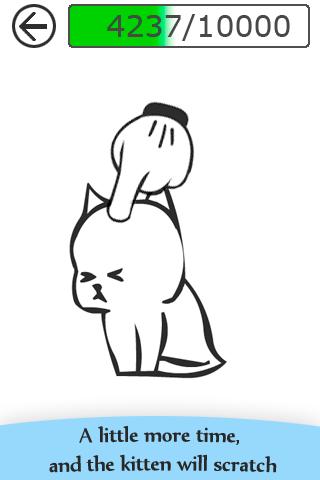 Angered Kitten