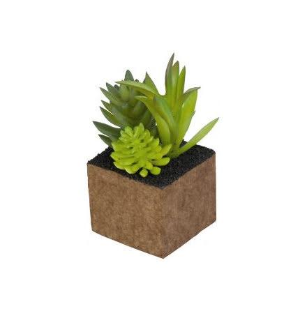 Kub Plantmix