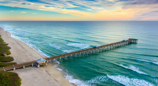Five Best Things In Palm Beach