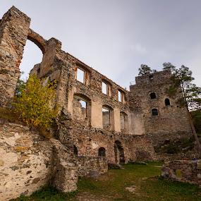 Ruin of Dobra  by Franz  Adolf - Buildings & Architecture Public & Historical ( ruin, castle )