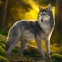 The Wolf Simulator icon
