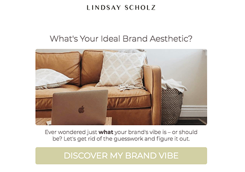 Quiz cover on what's your ideal brand aesthetic?