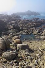 Photo: Rocks and Fog- 17-Mile Drive, Pebble Beach, CA