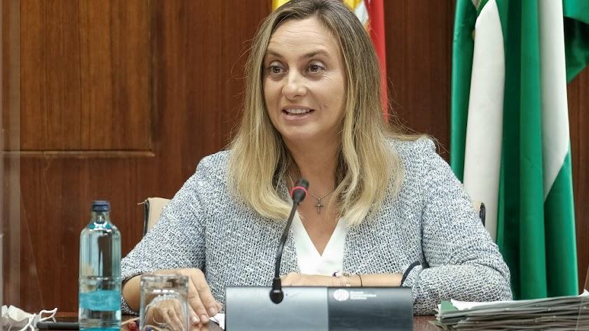 Marifrán Carazo durante la Comisión celebrada esta mañana.