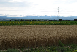 Photo: Day 99 - Wheat, Sunflowers & the Mountain Range We Crossed