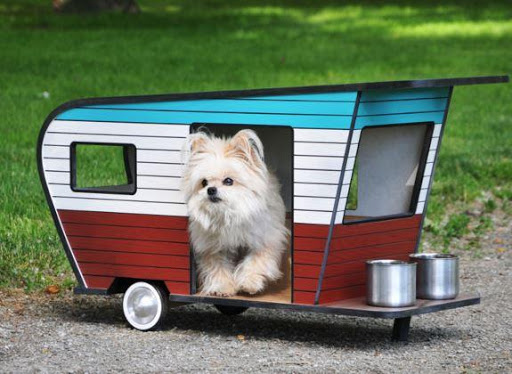 애완 동물 집 디자인 아이디어不限時間玩生活App-APP試玩